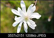Kliknij obrazek, aby uzyskać większą wersję  Nazwa:mag.jpg Wyświetleń:65 Rozmiar:1,18 MB ID:189627