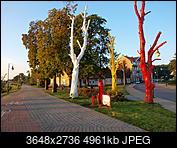 Kliknij obrazek, aby uzyskać większą wersję  Nazwa:P9290200.JPG Wyświetleń:58 Rozmiar:4,84 MB ID:194723