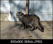 Kliknij obrazek, aby uzyskać większą wersję  Nazwa:p1330059.jpg Wyświetleń:100 Rozmiar:388,5 KB ID:140723