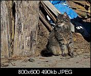 Kliknij obrazek, aby uzyskać większą wersję  Nazwa:p1330067.jpg Wyświetleń:100 Rozmiar:490,2 KB ID:140729