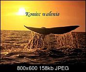 Kliknij obrazek, aby uzyskać większą wersję  Nazwa:45_1_.JPG Wyświetleń:31 Rozmiar:158,1 KB ID:223945