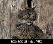 Kliknij obrazek, aby uzyskać większą wersję  Nazwa:p1330069.jpg Wyświetleń:99 Rozmiar:383,5 KB ID:140730