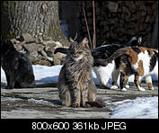 Kliknij obrazek, aby uzyskać większą wersję  Nazwa:p1330078.jpg Wyświetleń:105 Rozmiar:361,4 KB ID:140734