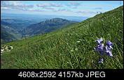 Kliknij obrazek, aby uzyskać większą wersję  Nazwa:P6293453.jpg Wyświetleń:37 Rozmiar:4,06 MB ID:230167