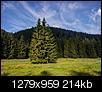Kliknij obrazek, aby uzyskać większą wersję  Nazwa:Tatry_Tatry_2012-08-18_246.jpg Wyświetleń:446 Rozmiar:214,4 KB ID:69219