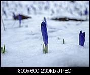 Kliknij obrazek, aby uzyskać większą wersję  Nazwa:20150418_033.jpg Wyświetleń:64 Rozmiar:230,4 KB ID:145511