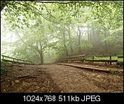 Kliknij obrazek, aby uzyskać większą wersję  Nazwa:_A262928.jpg Wyświetleń:116 Rozmiar:510,9 KB ID:150135