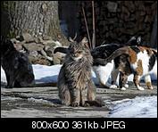 Kliknij obrazek, aby uzyskać większą wersję  Nazwa:p1330078.jpg Wyświetleń:116 Rozmiar:361,4 KB ID:140734