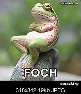 Kliknij obrazek, aby uzyskać większą wersję  Nazwa:smieszne-obrazki-i-gify-foch.JPEG Wyświetleń:29 Rozmiar:19,3 KB ID:199908