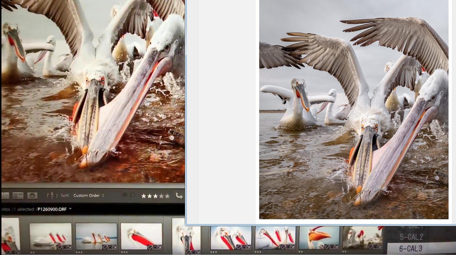 Kliknij obrazek, aby uzyskać większą wersję  Nazwa:CAL3.jpg Wyświetleń:116 Rozmiar:912,0 KB ID:209673