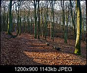 Kliknij obrazek, aby uzyskać większą wersję  Nazwa:P1300101.jpg Wyświetleń:61 Rozmiar:1,12 MB ID:208376