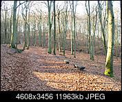 Kliknij obrazek, aby uzyskać większą wersję  Nazwa:P1300101a.jpg Wyświetleń:66 Rozmiar:11,68 MB ID:208377