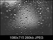 Kliknij obrazek, aby uzyskać większą wersję  Nazwa:_DSC2780.jpg Wyświetleń:32 Rozmiar:259,5 KB ID:215655