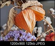Kliknij obrazek, aby uzyskać większą wersję  Nazwa:1.jpg Wyświetleń:37 Rozmiar:125,2 KB ID:230086