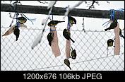 Kliknij obrazek, aby uzyskać większą wersję  Nazwa:A.jpg Wyświetleń:35 Rozmiar:105,8 KB ID:230509