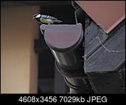 Kliknij obrazek, aby uzyskać większą wersję  Nazwa:OI000307.JPG Wyświetleń:151 Rozmiar:6,86 MB ID:211516