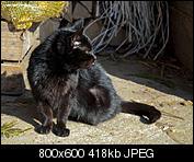 Kliknij obrazek, aby uzyskać większą wersję  Nazwa:p1330063.jpg Wyświetleń:90 Rozmiar:418,0 KB ID:140728