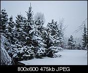 Kliknij obrazek, aby uzyskać większą wersję  Nazwa:p1330844.jpg Wyświetleń:90 Rozmiar:474,8 KB ID:144946