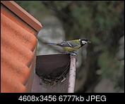 Kliknij obrazek, aby uzyskać większą wersję  Nazwa:OI000311.JPG Wyświetleń:150 Rozmiar:6,62 MB ID:211517