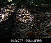 Kliknij obrazek, aby uzyskać większą wersję  Nazwa:P9220019.jpg Wyświetleń:66 Rozmiar:179,4 KB ID:217891