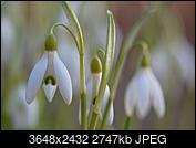 Kliknij obrazek, aby uzyskać większą wersję  Nazwa:P2275161_DxO_9.jpg Wyświetleń:86 Rozmiar:2,68 MB ID:188481
