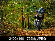 Kliknij obrazek, aby uzyskać większą wersję  Nazwa:P2690245.jpg Wyświetleń:38 Rozmiar:728,7 KB ID:217265