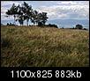 Kliknij obrazek, aby uzyskać większą wersję  Nazwa:IMG_0377-2IN.jpg Wyświetleń:173 Rozmiar:882,6 KB ID:105280